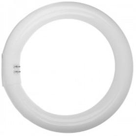 Lâmpada G10Q T8 Circular TLE 40w/840 - LP-TLE01