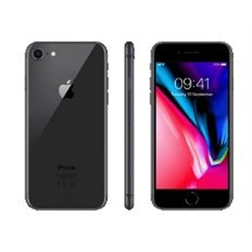 TLM LIVRE APPLE IPHONE 8 64 GB SPACE GRAY - 1812.1391